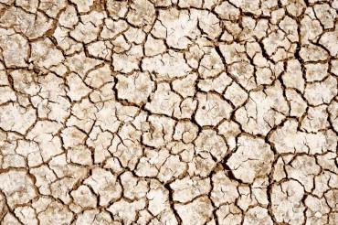 Cracked Lands