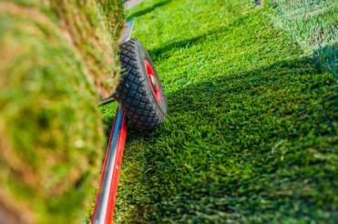 Creating New Grass Field