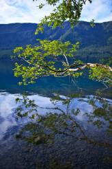 Crescent Lake Branch
