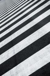 Crosswalk Zebra Crossing