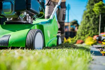 Dethatcher Work Lawn Care