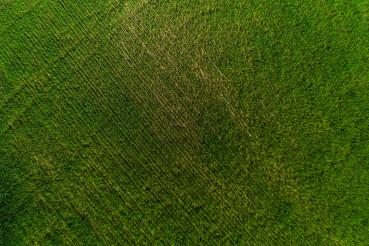 Aerial View Of Green Farmland.