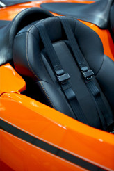 Double Seat Belts