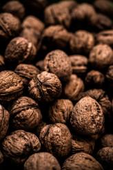 Dried Organic Walnut Photo