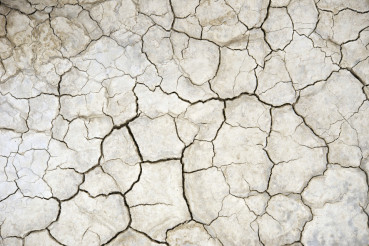 Dry Farmland