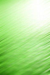 Elegant Green Background