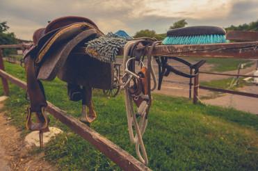 Equestrian Facility Horse Accessories