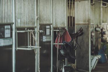 Equestrian Facility Horse Barn