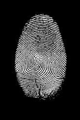 Fingerprint Isolated on Black