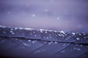 First Snow Flakes