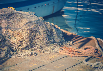 Fishing Nets in the Marina