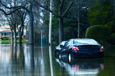 Flooded Compact Cars