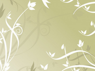 Floral Ornaments Vector Graphic