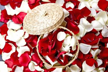 Flowers Petals Decoration