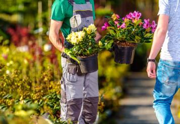 Flowers Sale Industry