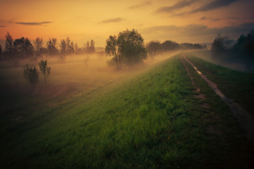 Foggy Floodbank Trail at Sunset