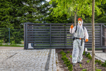 Fungicides Backyard Garden Trees by Professional Garden Worker