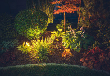 Garden Ambient Lighting