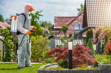 Garden Insecticide by Professional Gardener