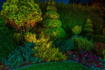 Garden Led Lighting Illumination