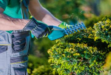 Garden Plants Electric Trimmer