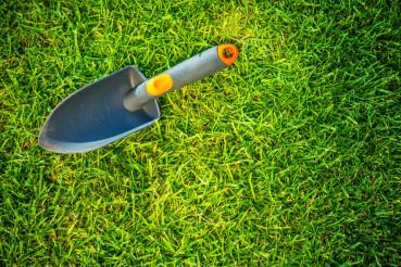 Garden Shovel on a Grass