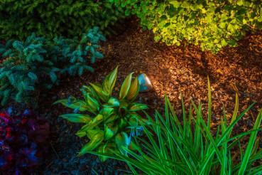 Garden Spot Illumination
