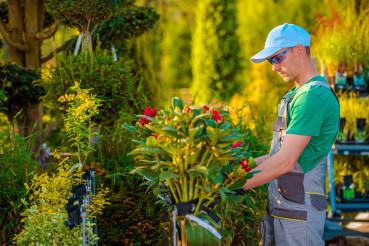 Garden Store Maintenance