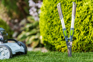 Garden Tools and Summer Backyard Maintenance Theme