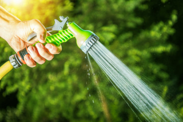 Garden Watering Closeup