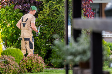 Garden Worker Trimming Plants During Spring Seasonal Maintenance