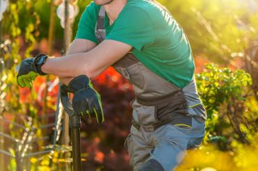 Gardener in His Beautiful Garden