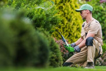 Gardener Performing Maintenance Inside Backyard Garden