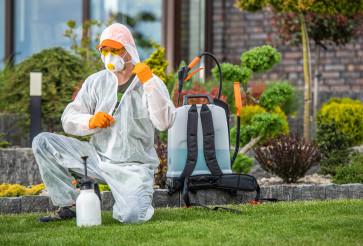 Gardener Preparing To Insecticide Garden Plants