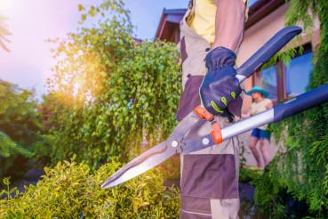 Gardener Ready For Garden Work