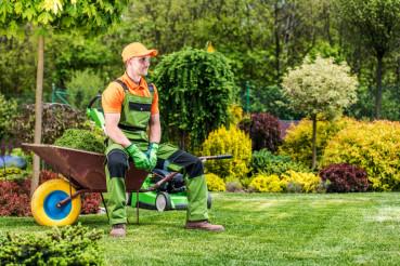 Gardener Relax on Wheelbarrow