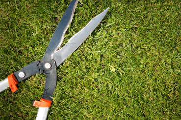 Gardener Scissors on the Grass