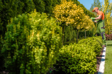 Gardener Trimming Plants