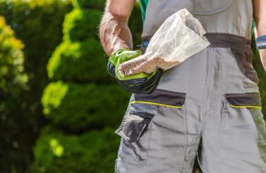 Gardener with Seeds in Hand