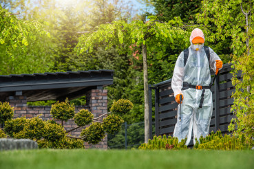 Gardener Working in Protection Suite Spraying Plants