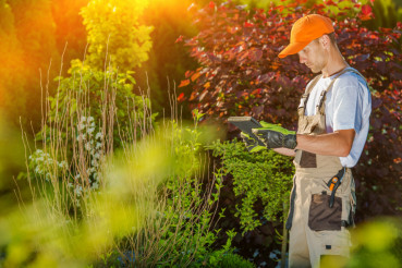 Gardener Working on Tablet