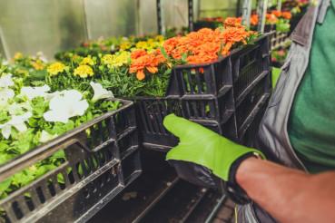 Gardening Business Concept