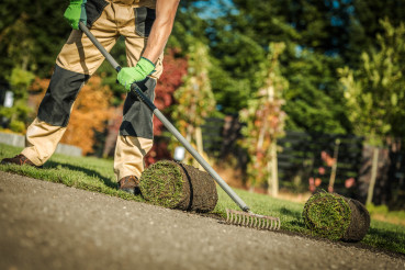 Gardening Company Worker Installing Fresh Natural Grass