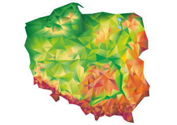 Geometric Poland Vector