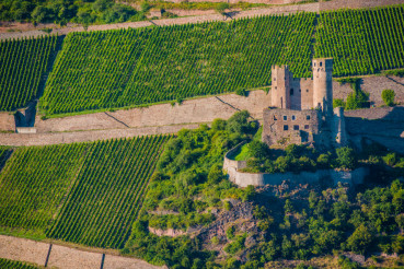 German Vineyards and Castle