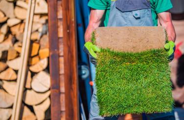 Grass Turfs Planting