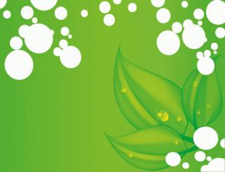 Green Leaves Vector Art