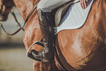 Horse Riding Stirrups