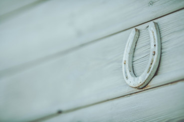 Horseshoe on a Wall