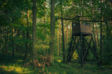 Observation Hunting Tower In Forest.